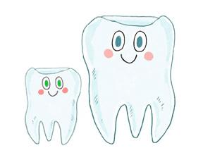 Sante Et Hygiene Prendre Soin De Ses Dents Ca S Apprend